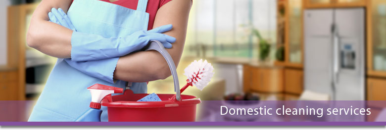 Domestic Cleaning In Leicester And Leicestershire K Creed